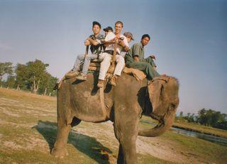 elefant-2.jpg